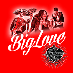 Big Love Cover_red250