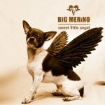 Big Merino (AUS)